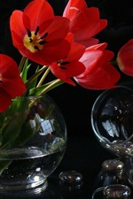 Preview iPhone wallpaper Red tulips, candle, vase