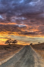 Road, grass, trees, red sky, clouds, sunset