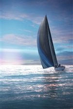 Preview iPhone wallpaper Sailing, moon, birds, sea