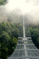 Preview iPhone wallpaper Skybridge, suspended, fog, trees, Russia