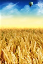 Preview iPhone wallpaper Wheat field, gold autumn, hot air balloon