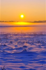 Preview iPhone wallpaper Winter, snow, grass, sunset