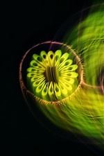 Fundo abstrato, círculos, luz, flores verdes