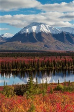 Preview iPhone wallpaper Alaska, mountains, forest, autumn, river, USA
