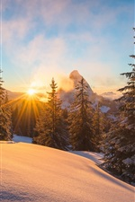 Preview iPhone wallpaper Alps, winter, snow, trees, sun rays