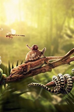 Preview iPhone wallpaper Animals, lizard, snake, iguana, frog, dragonfly, turtle and snail