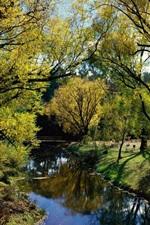 Preview iPhone wallpaper Australia, park, trees, river, bridge, sunshine