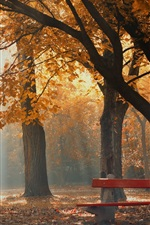Preview iPhone wallpaper Autumn, park, trees, bench, fog