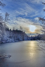 iPhone обои Баден-Вюртемберг, Германия, зима, деревья, река