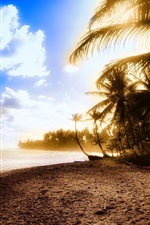 Preview iPhone wallpaper Beautiful beach, sunset, sea, coast, palm trees, clouds