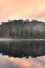Beedelup Lake, Karri forest, Australia, water reflection, sunset