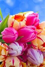 iPhone fondos de pantalla Tulipanes de ramo, flores de colores