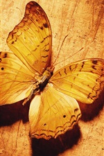 Preview iPhone wallpaper Butterfly, gold color