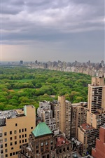 Preview iPhone wallpaper Central Park, New York, city, buildings, trees