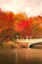 Preview iPhone wallpaper Central Park, boats, bridge, trees, red leaves, autumn, USA