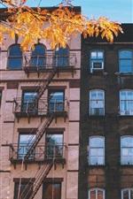 Preview iPhone wallpaper City buildings, windows, twigs, autumn