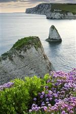 Preview iPhone wallpaper Coast, sea, rocks, ship, dusk