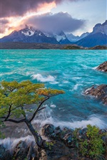 Preview iPhone wallpaper Cuernos del Paine, Patagonia, Chile, Lake Pehoe, mountains, tree, sunrise