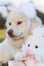 Preview iPhone wallpaper Dog and rabbit toy, funny animals