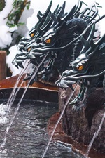 Preview iPhone wallpaper Dragons statue, fountain, water