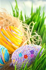Preview iPhone wallpaper Easter, colorful eggs, grass, sun