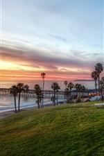 Evening, resort, palm trees, grass, benches, pier