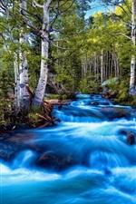 iPhone壁紙のプレビュー 森林、川、石、自然