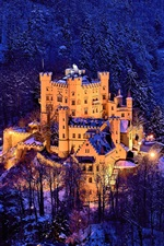 Preview iPhone wallpaper Germany, Bavaria, Hohenschwangau Castle , trees, winter, snow
