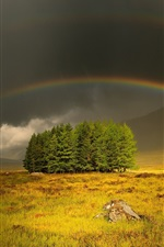 Preview iPhone wallpaper Gloomy and cloudy sky, grass, trees, rainbow