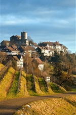 Preview iPhone wallpaper Grapes plantations, road, houses, village