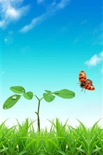 Preview iPhone wallpaper Grass, plants, ladybug, blue sky, sun