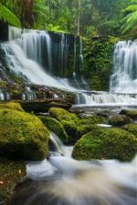Preview iPhone wallpaper Horseshoe Falls, creek, plants, moss