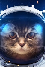 Preview iPhone wallpaper Humor, cat as a astronaut, space, light