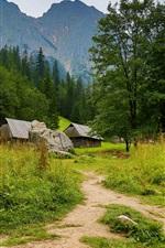 Preview iPhone wallpaper Huts, trees, path, mountains, Zakopane, Poland