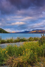 Preview iPhone wallpaper Lake Tekapo, New Zealand, pebbles, clouds, mountains, grass