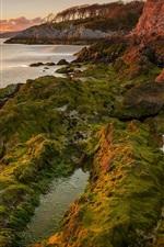 Preview iPhone wallpaper Lake, sunset, algae, mountains, rocks