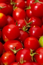 iPhone壁紙のプレビュー 多くの赤い小さなトマト、1つの緑