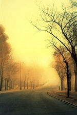 Preview iPhone wallpaper Park, road, trees, bench, fog