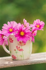 Preview iPhone wallpaper Pink flowers, cup, swing