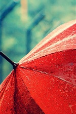 Red umbrella, after rain, water drops