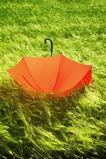 Preview iPhone wallpaper Red umbrella in the grass