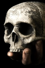 Preview iPhone wallpaper Skull, hand, black background