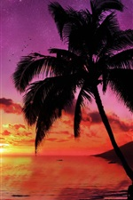 Preview iPhone wallpaper Sunset palm trees, sea, red sky, planet