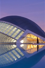 Preview iPhone wallpaper Valencia, Spain, buildings, water, lights, night
