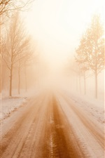 Preview iPhone wallpaper Winter, road, snow, trees, fog, morning