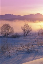 Preview iPhone wallpaper Winter, snow, morning, sunrise, trees, mist