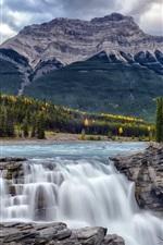 Cataratas de Athabasca, Alberta, Canadá, árvores, montanhas