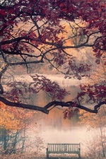 Preview iPhone wallpaper Autumn, maple trees, leaves, bench, river