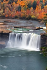 Preview iPhone wallpaper Autumn, trees, waterfall, USA