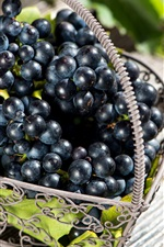 Preview iPhone wallpaper Black grapes, fruit, basket